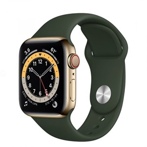 Умные часы Watch S6 40mm Gold Stainless Steel Case with Cyprus Green Sport Band (M06V3)