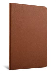 Чехол для iPad (модель 9.7-дюймов 2017/2018 года) / iPad Air 2, Jison Case c кармашком для Pencil, коричневый
