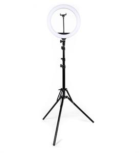 Кольцевая светодиодная лампа 33 см с креплением для телефона и штативом для профессиональной съемки (2м)