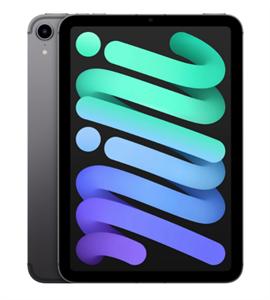 Планшет iPad mini (2021) Wi-Fi + Cellular 256GB, Space Gray, серый космос (MK8F3)